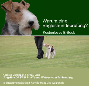 cover-begleithund-kl